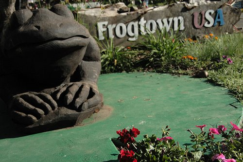 frogtown calaveras county fair