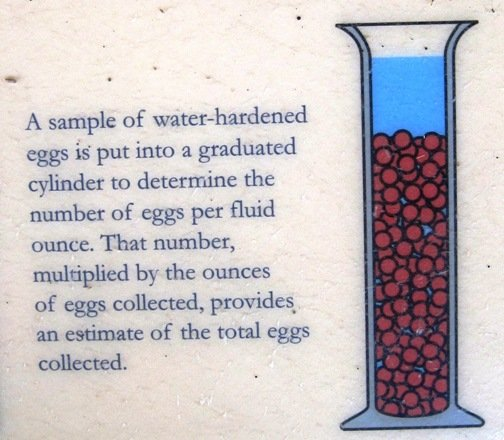 eggs per fluid ounce fish hatchery