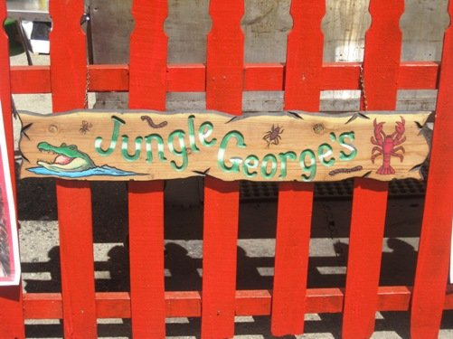 jungle georges alameda county fair