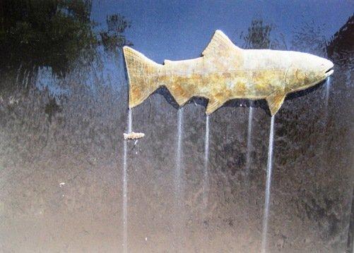 mokelumne fish hatchery clements ca