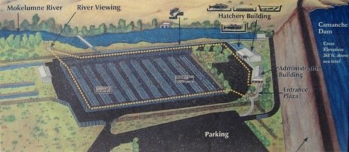 mokelumne river fish hatchery map
