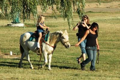 dellosso farms pony ride