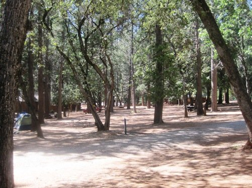 tent camping pine grove ca
