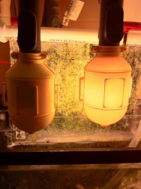 Algae Turf Scrubbers How To Remove Algae