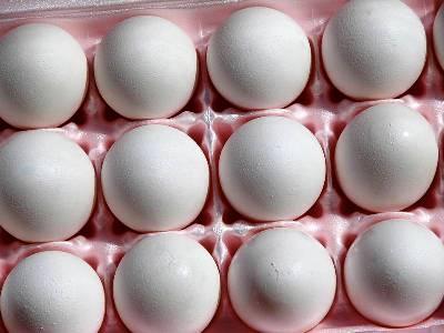 egg storage life chart