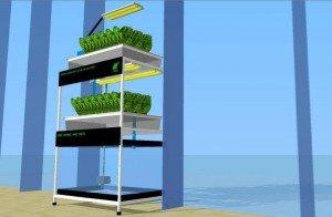DIY Aquaponics Plans