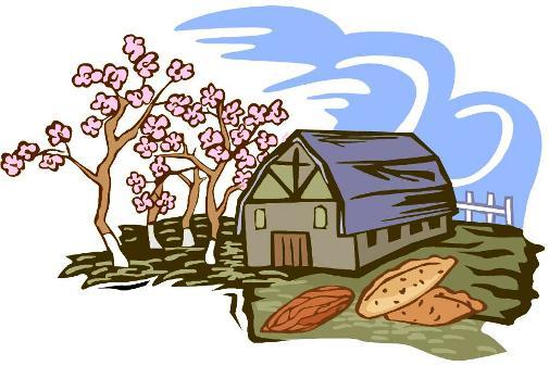 national pecan day april 14 2012