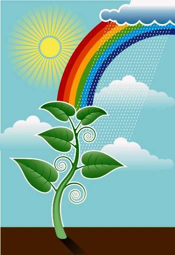 plant something day 2012