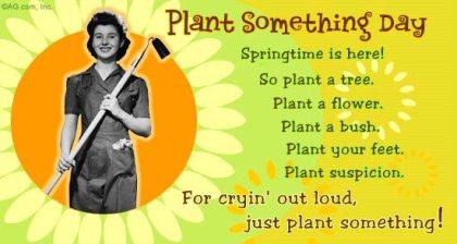 plant something day