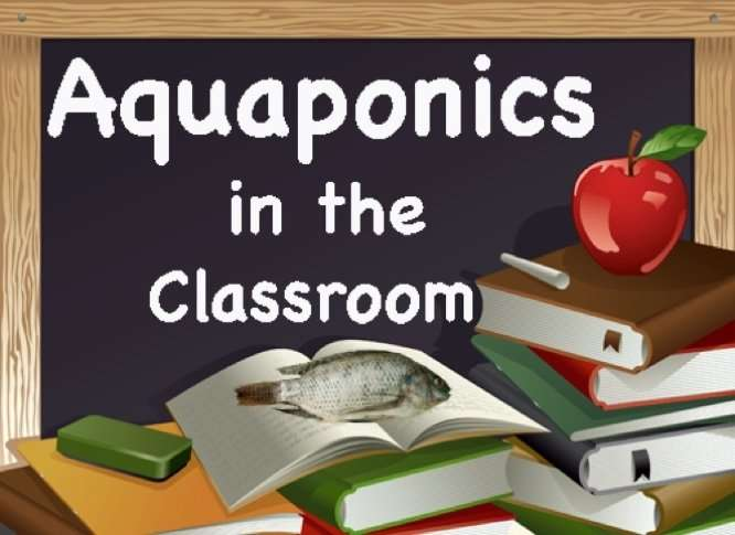 Aquaponics Classes And Workshops